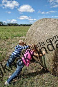 Genç ve çocuk işçi