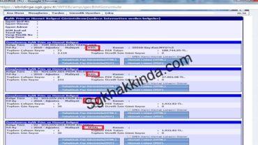 E-bildirge de ek belge iptal edilebilir mi?