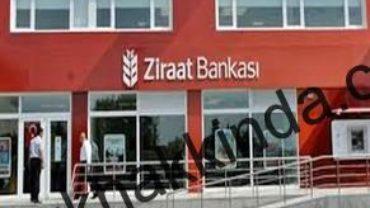 Ziraat bankası 291 x 221 370x208 - Bağkur borcu olan esnafa Ziraat Bankasından özel kredi fırsatı