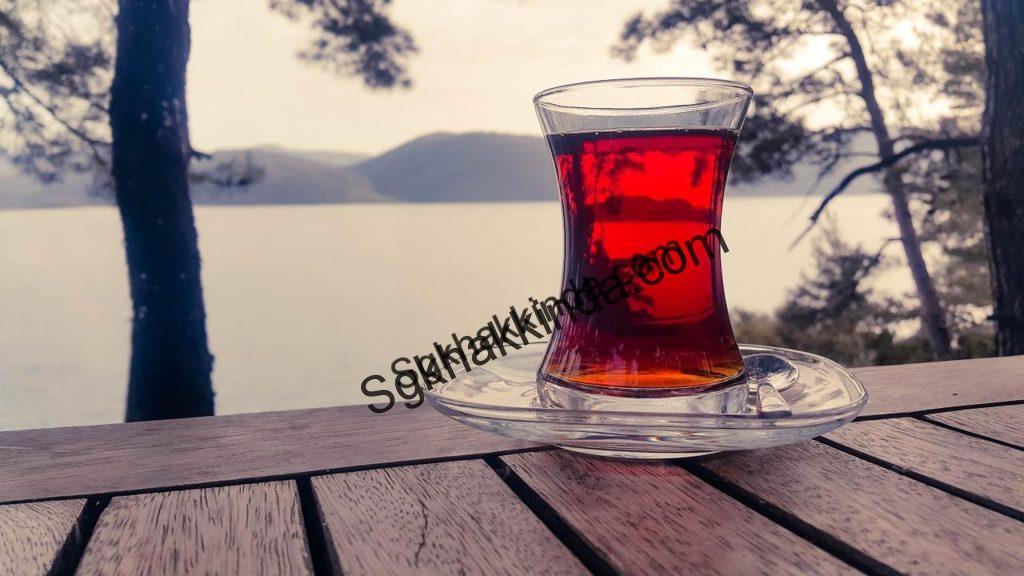 Çay molası çalışma süresinden sayılır mı?