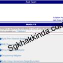 E-bildirge v2 uygulaması